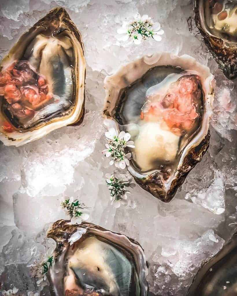 oysters pickled ginger granita