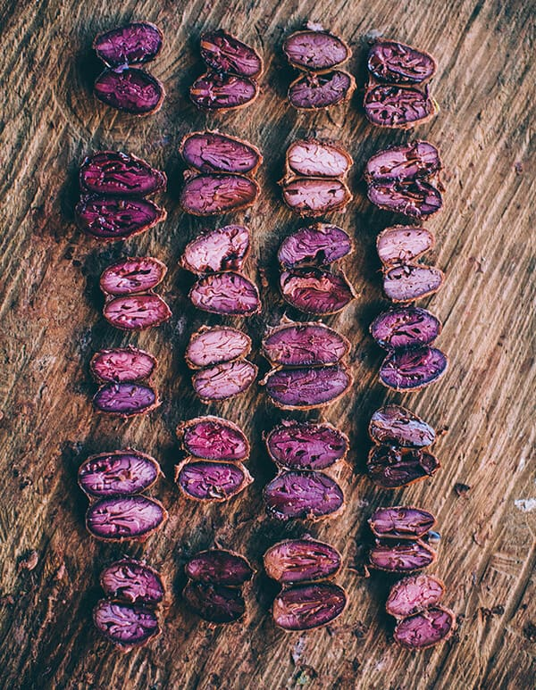 purple cacao beans