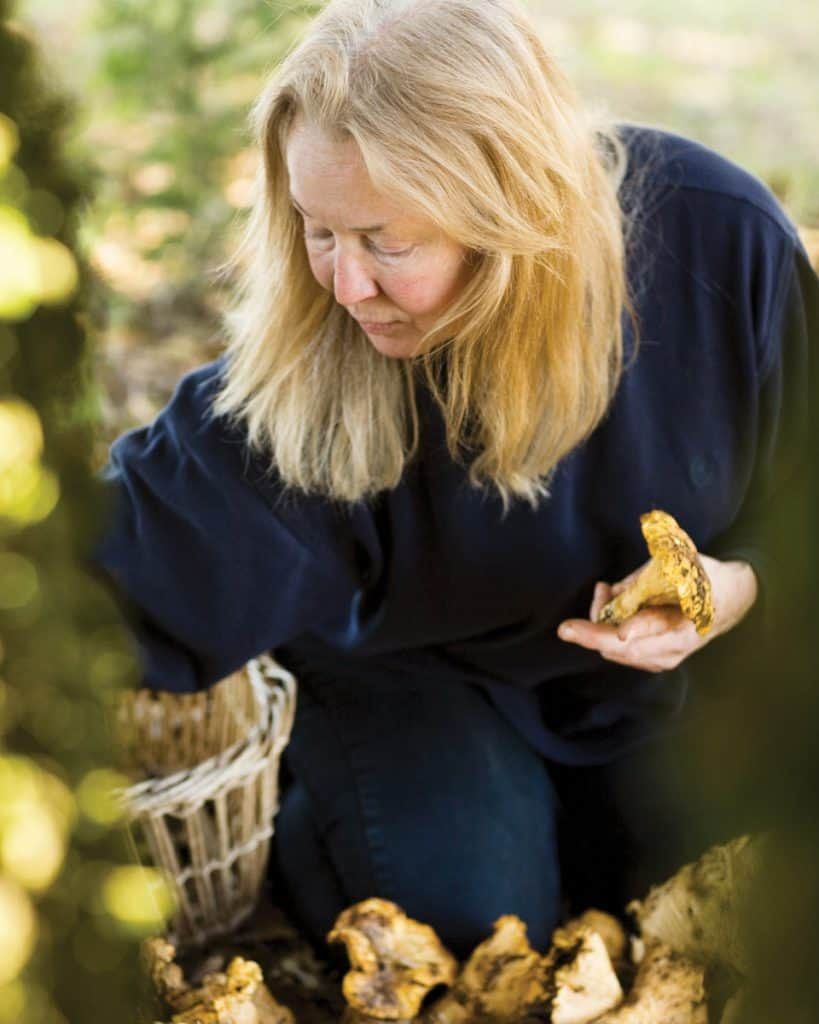 Connie Green foraging for mushrooms