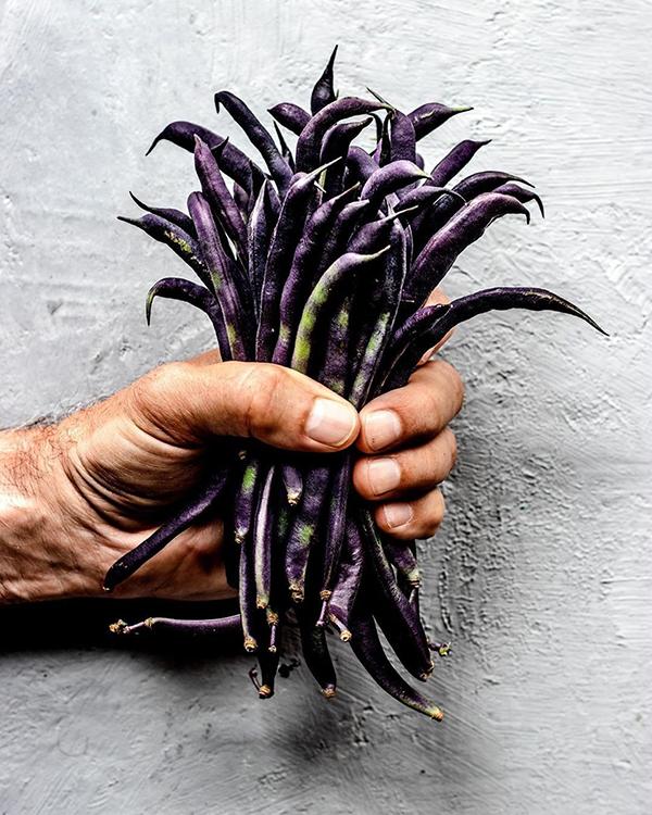 purple violetta beans