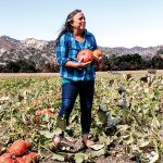 Magical Pumpkins: The sweetest kabocha squash comes from the godmother of organic farming