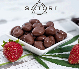 satori chocolate strawberry bites
