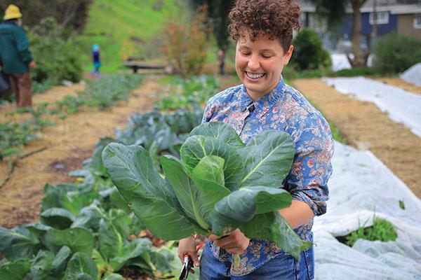 cabbage at alemany farm san francisco