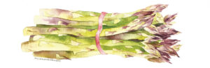 asparagus with red rubber band