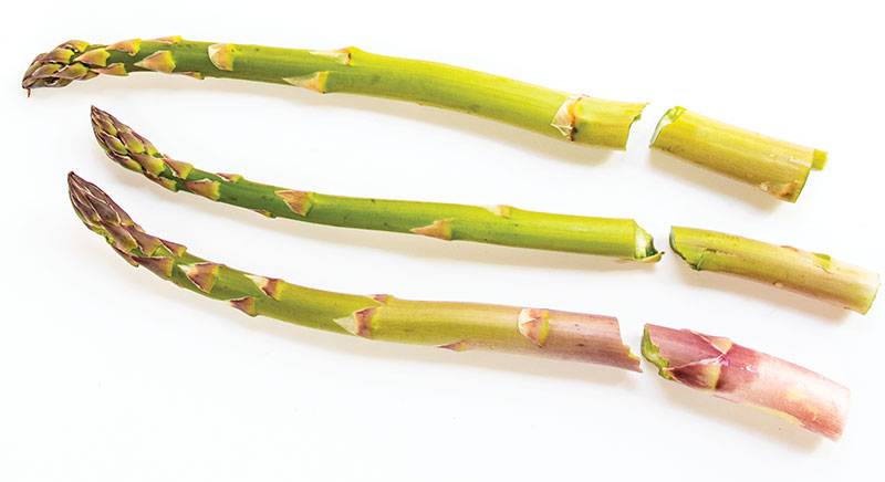 snapped asparagus