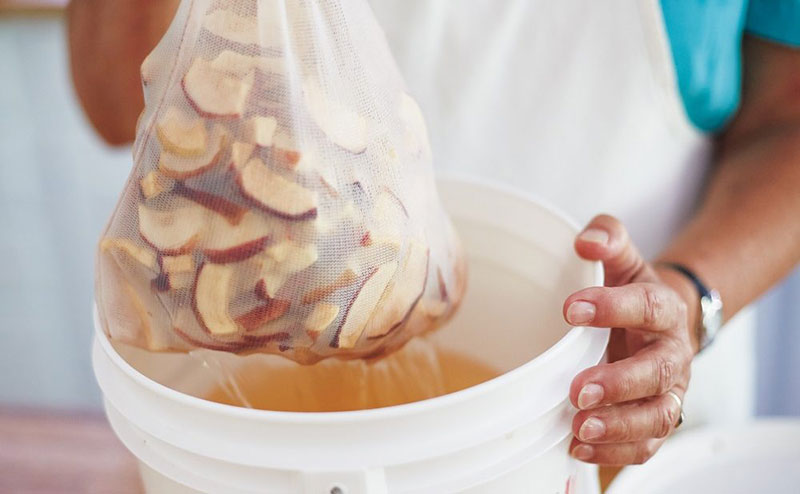 fruits to use for homemade wine